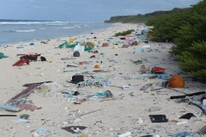 the oceans edge is the dumping point for our misdeeds